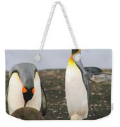 King Penguins With Chick And Egg Weekender Tote Bag