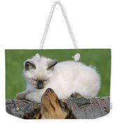 Kitten And Puppy Playing Weekender Tote Bag