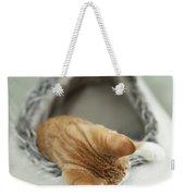 Kitten In An Igloo Weekender Tote Bag