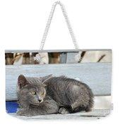 Kitten In Hydra Island Weekender Tote Bag