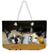 Kittens In A Box Weekender Tote Bag