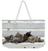 Kittens In Hydra Island Weekender Tote Bag