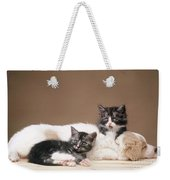 Kittens Lying With Puppy Weekender Tote Bag