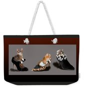 Kittens In Designer Ladies Shoes Weekender Tote Bag