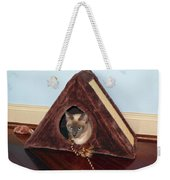Kitty A-frame Weekender Tote Bag