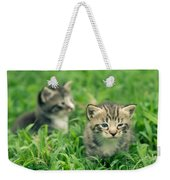 Kitty In Grass Weekender Tote Bag