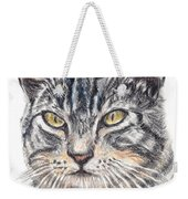Kitty Kat Iphone Cases Smart Phones Cells And Mobile Cases Carole Spandau Cbs Art 337 Weekender Tote Bag