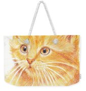 Kitty Kat Iphone Cases Smart Phones Cells And Mobile Cases Carole Spandau Cbs Art 339 Weekender Tote Bag