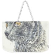 Kitty Kat Iphone Cases Smart Phones Cells And Mobile Cases Carole Spandau Cbs Art 347 Weekender Tote Bag