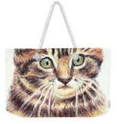 Kitty Kat Iphone Cases Smart Phones Cells And Mobile Cases Carole Spandau Cbs Art 350 Weekender Tote Bag
