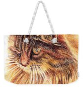 Kitty Kat Iphone Cases Smart Phones Cells And Mobile Cases Carole Spandau Cbs Art 352 Weekender Tote Bag