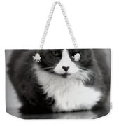 Kitty On A Car Weekender Tote Bag