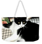 Kitty On His Perch Weekender Tote Bag