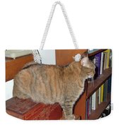 Kitty On The Big Box Weekender Tote Bag