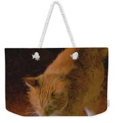 Kitty Paws Weekender Tote Bag