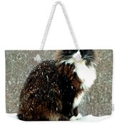 Kittycat In The Snow On The Fence Weekender Tote Bag