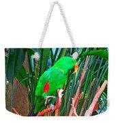Kiwi Weekender Tote Bag