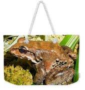 Knudsen Thin Toed Frog Weekender Tote Bag