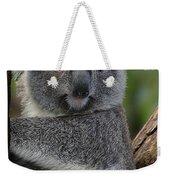 Koala Weekender Tote Bag