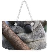 Koala Male Sleeping Australia Weekender Tote Bag