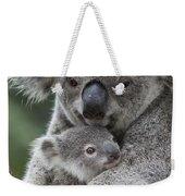 Koala Mother Holding Joey Australia Weekender Tote Bag