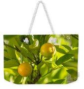 Kumquats Weekender Tote Bag