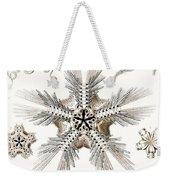 Kunstformen Der Natur Weekender Tote Bag by Ernst Haeckel