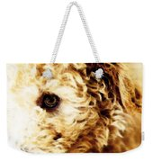 Labradoodle Dog Art - Sharon Cummings Weekender Tote Bag