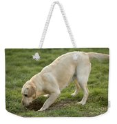 Labrador Checking Hole Weekender Tote Bag