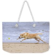 Labrador Dog Chasing Ball On Beach Weekender Tote Bag