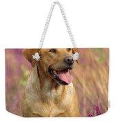 Labrador Dog Weekender Tote Bag