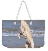 Labrador Dog Jumping For Ball Weekender Tote Bag