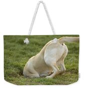 Labrador In Hole Weekender Tote Bag