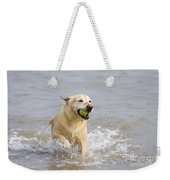 Labrador-mix Retrieving Ball Weekender Tote Bag