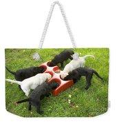 Labrador Puppies Eating Weekender Tote Bag