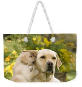Labrador Puppy Playing With Parent Weekender Tote Bag
