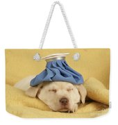 Labrador Puppy With Ice Pack Weekender Tote Bag