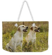 Labrador Retriever Dogs Weekender Tote Bag
