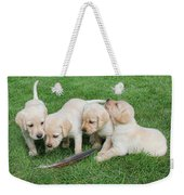 Labrador Retriever Puppies And Feather Weekender Tote Bag
