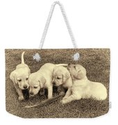 Labrador Retriever Puppies And Feather Vintage Weekender Tote Bag