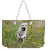 Labrador Running Weekender Tote Bag