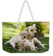 Labrador With Young Puppies Weekender Tote Bag