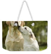 Labradors, Adult And Young Weekender Tote Bag