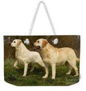 Labradors Weekender Tote Bag