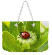 Lady Bug In The Garden Weekender Tote Bag
