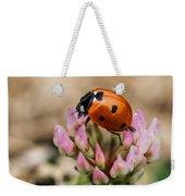 Lady Bug On Clover Weekender Tote Bag