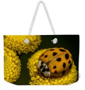 Lady Bug Weekender Tote Bag