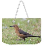 Lady Grackle On A Walk Weekender Tote Bag