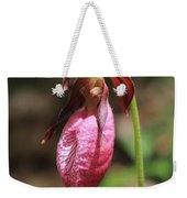 Lady Slipper At Moore State Park Close Up 2 Weekender Tote Bag