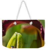 Ladybird Beetle Cuddled By Lily Blossom 4 Weekender Tote Bag